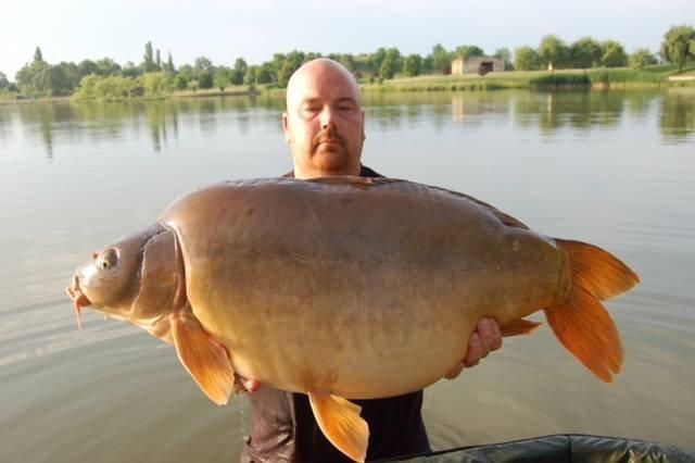 Monster karper uit Hongarije.....